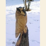 gallery_owl